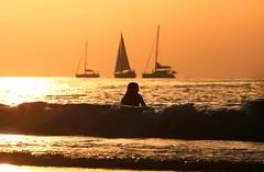 Bathing & sailing - Tel-Aviv beach - Follow me on Instagram:  @lior_leibler22 (Lior. L) Tags: bathingsailingtelavivbeach bathing sailing telaviv beach