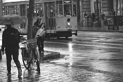 Market St Candids 43 (TheseusPhoto) Tags: people city street sanfrancisco california candid streetphotography streetcar rain reflection wet blancoynegro blackandwhite monochrome homeless trolley