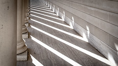 Lines and Shadows (ER Post) Tags: americanstates california californiafebruary2018 legionofhonor sanfrancisco trips shadow unitedstates us