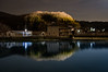 PhoTones Works #9635 (TAKUMA KIMURA) Tags: photones pentax ricoh kp takuma kimura 木村 琢磨 風景 景色 自然 landscape nature snap night lake 夜 湖 池