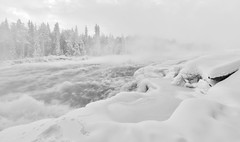 Torrent of Cold (Harald Philipp) Tags: sweden lapland river frozen cold ice snow winter blackandwhite bw monochrome storforsen rapids pitariver torrent whitewater arctic