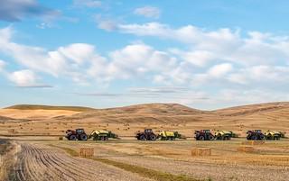 Wheat Harvest - Palouse, Washington
