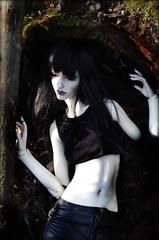 7. Shadow (Madrugadah) Tags: eva bjd sard soom hybrid pale woods shadow shadworun sr doll abjd