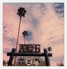 Ace Sign 2 (tobysx70) Tags: polaroid originals color sx70 instant film sx70sonar sonar ace hotel swim club east palm canyon drive palmsprings california ca wood wooden sign tree feel good spa blue sky clouds mojave desert polaroadtrip polawalk 030818 toby hancock photography