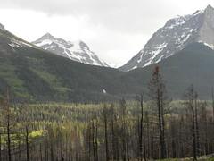 Glacier 8 (GAWV) Tags: montana flatheadriver glacier mountains beauty buffalo river water bigsky