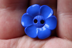 blue button (Patrick JC) Tags: macromondays theblues button blue hand plastic flower shape