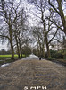 regents park London - 5mph (neilalderney123) Tags: london parp road treeline trees camden landscape olypus