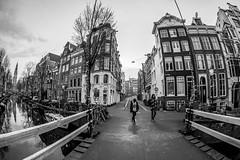 A0082045-2 (rpajrpaj) Tags: amsterdam city cityscape bluehour sunrise canal staalmeestersbrug bridge samyang fisheye 75mm groenburgwal samyangcsc75mmf35umcfisheyemft