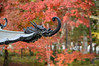 The dragon (Aerisabel) Tags: kioto autumn red dragon temple shrine holidays travel japan japon kyoto nanzenji zenrinji 禅林寺 南禅寺