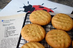 Peanut Butter Cookies (ladybugdiscovery) Tags: peanutbuttercookies cookies baking recipe yummy