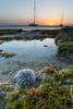 Last light on the tidal pool (Beth Bennett & Gérard Cachon) Tags: bonaire caribbean seascape tidalpool tidepool westindianseaegg urchin seagrass sunset sailboat boat