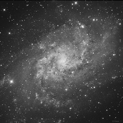 Messier 33 luminance HDR (eric ganz) Tags: messier galaxy telescope astrophotography