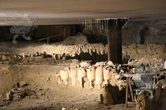 museoDiffuso Testaccio_mercato_03
