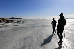 Winterwalk at Skeppsmyran (Anders Sellin) Tags: skeppsmyran sverige sweden vinter winter ice is stockholm vandring