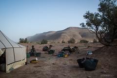 Vallee du Draa © Sophie Bigo - SBGD 2018-30 (SBGD_SophieBigo) Tags: photography artdirector freelance sophiebigo maroc trip travelphotography traveler trek morocco light