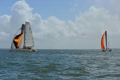 LOX_4053 (Lox Pix) Tags: australia queensland brisbanetogladstone yachtrace catamaran trimaran 2018 bossracing multihull loxpix moretonbay shorncliffe cabbagetreecreek rudder aground sailing loxworx