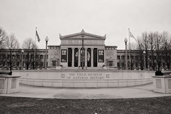 Entrance (ancientlives) Tags: chicago illinois il usa fieldmuseum museum museumcampus downtown southloop architecture buildings streetphotography skyline city cityscape sepia mono monochrome blackandwhite bw monday april 2018 spring fuji fujixt1 fuji18mm 18mm