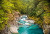Everything in its right place (.KiLTRo.) Tags: mountaspiringnationalpark otago newzealand nz kiltro bluepoolswalk nature river landscape water blue cyan green forest trees