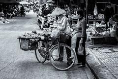 Marchand à vélo (Guillaume_BRIAND) Tags: nikon d750 2470 tamron ninh binh ninhbinh vietnam vélo bike