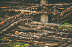 (Mikaela Dana) Tags: wood fence braided twigs rural outdoor nikon branches old trees