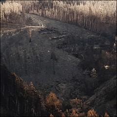 manter (incognitaNdP) Tags: devastating fires centralportugal