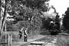 EVR 73323bw (kgvuk) Tags: evr ecclesbournevalleyrailway railway train locomotive steam engine tankengine jinty 060t steamengine steamlocomotive steamtrain 47406 reenactors platelayers trackgang