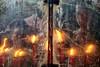 Kuala Lumpur (Chot Touch) Tags: chinatown chinease temple fire sony morning mirror streetphotography kualalumpur malaysia