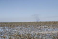 Florida Everglades (blackunigryphon) Tags: everglades swamp florida southernflorida fan boat fanboat sawgrassrecreationpark
