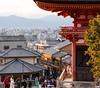 Kyoto from Above (thedailyjaw) Tags: kyoto japan kiyomizudera shrine temple japanesepeople people nikon d610