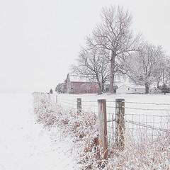 Spring Snow (wdterp) Tags: fence fencefriday hff snow winter farm barn