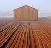 Geometrycky (Robyn Hooz (away)) Tags: valli po geometry lines pentagon pentagono campo field arato casa mud terra soil veneto