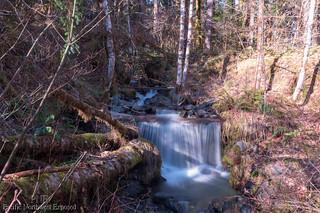 Waterfall 7462