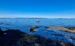 Mt. Doug Beach (Per@vicbcca) Tags: landscape canada mtdougpark vacation victoria beach vancouverisland travel tourism iphone8plus britishcolumbia park apple mtdoug