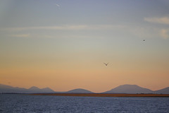 IMG_2170 (frknblr) Tags: sunset mountain landscape colourful water white blue nature lake eos canon manzara konya beyşehirgölü beyşehir göl türkiye turkey