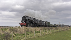 Military by the Sea (4486Merlin) Tags: 6046 england europe foreignlocos foreignsteamlocos goodstrain heritagerailways railways southwest transport usatcclasss160 unitedkingdom westcountry westsomersetrailway blueanchor somerset gbr wsrspringsteamgala