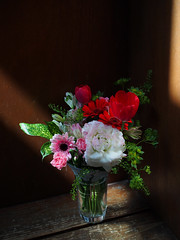at Kawabe station (murozo) Tags: kawabe station yurikogen railway local flower wood yurihonjo akita japan 川辺駅 駅 由利高原鉄道 ローカル線 花 木 待合室 秋田 由利本荘 日本