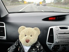 We're off! (pefkosmad) Tags: tedricstudmuffin teddy ted bear cute cuddly animal toy stuffed soft plush fluffy holiday week holibob cottage cornwall bodmin cardinham westcountry westsidecottage daysout trips touring tourist tourism adventures journey