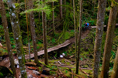 Tara in the woods (tristanrayner.com) Tags: mountainbikes squamish tara bc british columbia forest trees rainforest biking green ride rupert