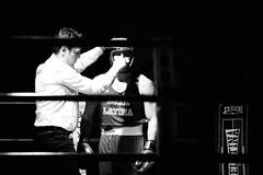 22278 - Blood (Diego Rosato) Tags: boxelatina palaboxe boxe boxing night rawtherapee nikon d700 70200mm sigma bianconero blackwhite arbitro referee blood sangue naso nose