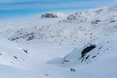 Up hill from Breistølen (hanschristian_nielsen) Tags: norge skiferie hyttetilhytte cabintocabin skarvheimen snow winter norway breistølen