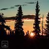 Alaskan Sunflare (fentonphotography) Tags: sunset sunflare orangesky trees silhouette alaska landscape