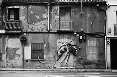 Inquietant borinot virtual / Virtual photobee (SBA73) Tags: catalonia catalunya katalonien catalogne catalogna vallès vallèsoccidental sabadell bin byn bw pelicula film camara camera analogic classic vintage fed2 soviet rangefinder urban werens inquietant borinot abejorro bumblebee bee virtual grafitti abandoned urbex