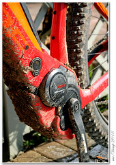 e-Bike (Mr.Vamp) Tags: ebike cube bosch akku motor mrvamp dreckig schmutzig waldfahrt