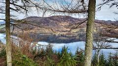 Loch Carron viewpoint (Raúl Alejandro Rodríguez) Tags: loch agua water montañas mountains árboles trees reflejos reflections geología geology carron highlands escocia scotland uk paisaje landscape