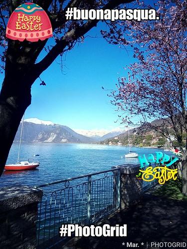 PhotoGrid_1522578098832