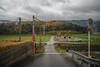 Single track. (Yasuyuki Oomagari) Tags: country countryside rainy hill railroad crossing rural yellow pole perspective nikon zeiss distagont2821 landscape japan fukuoka 福岡 日本 鉄道 ローカル線 単線 雨 風景写真 d850