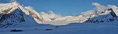 Expanse (Alpine Light & Structure) Tags: switzerland schweiz suisse alps alpen alpes konkordiaplatz berneroberland berneseoberland