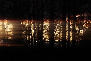 Leaking light | Vuotava valo