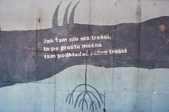 Toruń. (winogrono_w_oku) Tags: toruń rejs film cytat quotes blue analog analogue mural kodak kodakgold200 ishootfilm filmisnotdead old vintage retro klisza kino cinema pentax 35mm