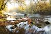 Vallée du Scorff (Faouic) Tags: france bretagne morbihan vallée lescorff automne rivière reflet réflection